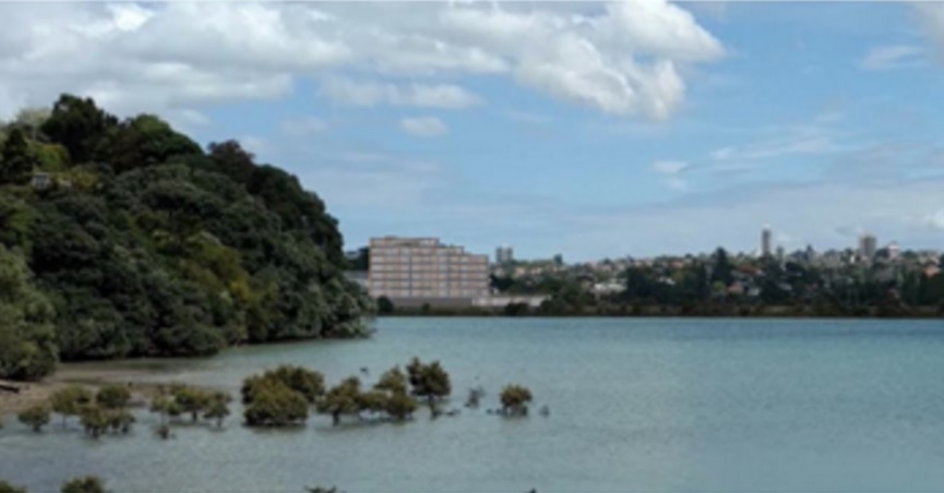 Update: Proposed Apartments at 236 Orakei Road