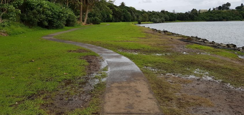 Ōrākei Basin Pathway Design: Residents' Concerns