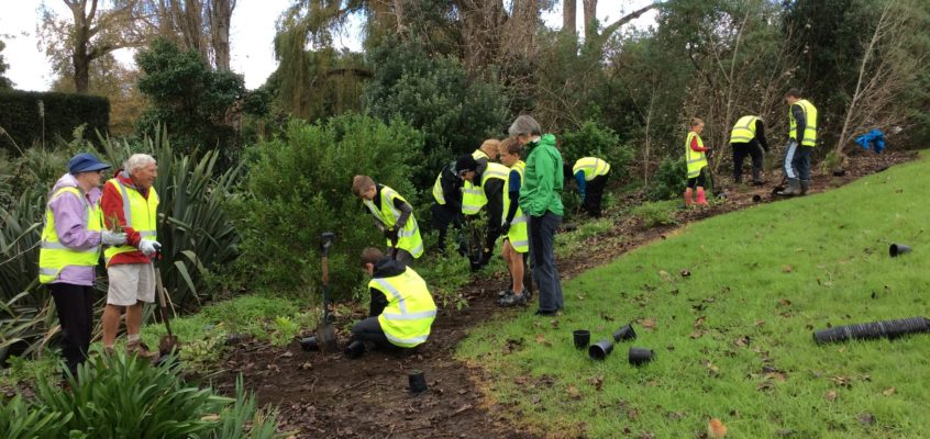 Restoration of the Waiata Reserve – Notice of Event